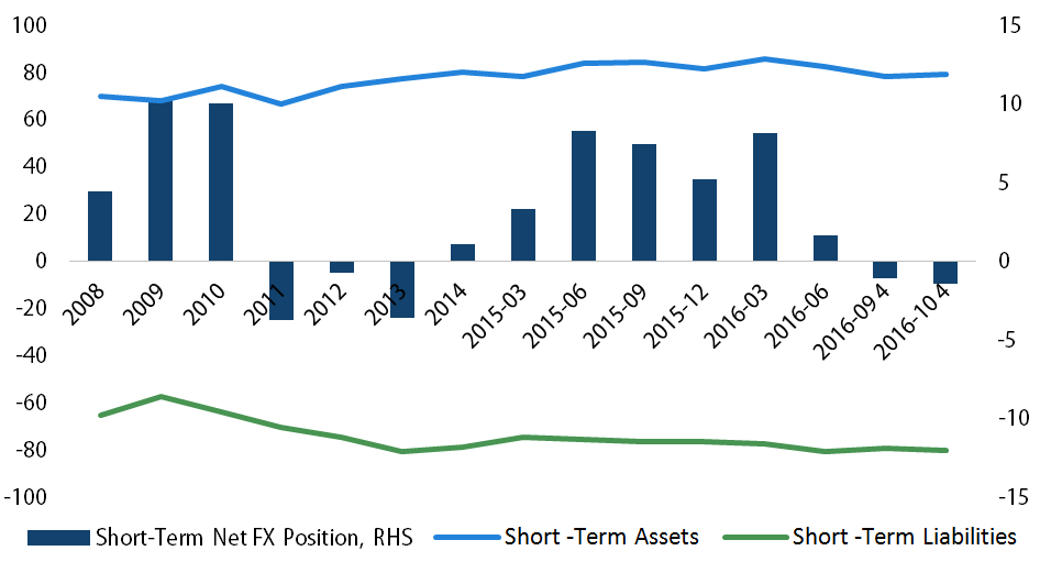 Short Term Net FX Position